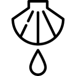 nimble_asset_Baptism